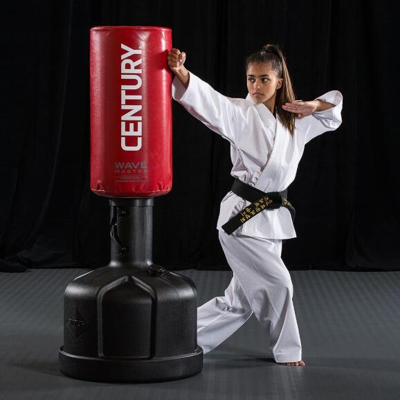 martial arts punching bag