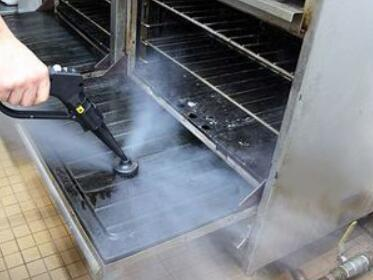 the best steam cleaner for oven